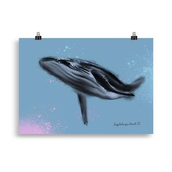 Whaley nice knølhval