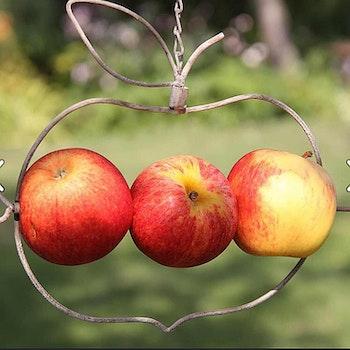 Fågelmatare äpple