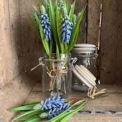 Konstväxt Pärlhyacint