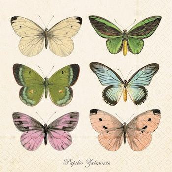 Servett Fjäril