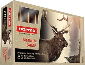 Norma Bondstrike .30-06 11.7g
