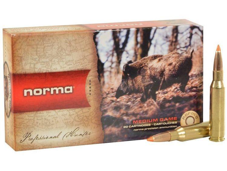 Norma Tipstrike .30-06 11g