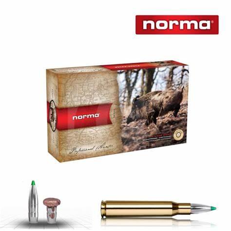 Norma Ecostrike(Blyfri).30-06 9.7g