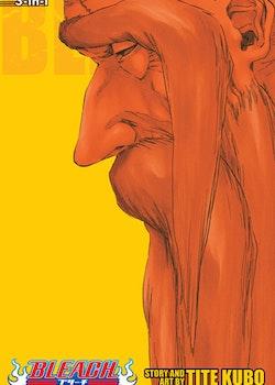 Bleach 2-in-1 Edition vol. 20 (Viz Media)