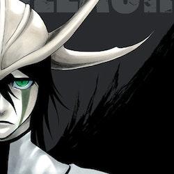 Bleach 2-in-1 Edition vol. 14 (Viz Media)