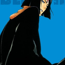 Bleach 2-in-1 Edition vol. 13 (Viz Media)