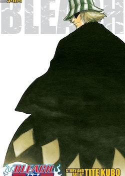 Bleach 2-in-1 Edition vol. 2 (Viz Media)