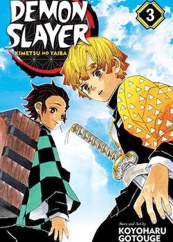 Demon Slayer: Kimetsu no Yaiba vol. 3 (Viz Media)