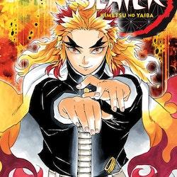 Demon Slayer: Kimetsu no Yaiba vol. 8 (Viz Media)