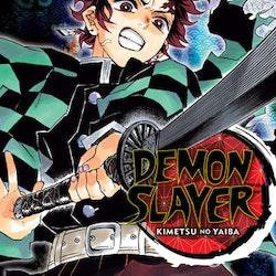 Demon Slayer: Kimetsu no Yaiba vol. 10 (Viz Media)