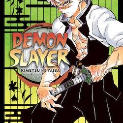 Demon Slayer: Kimetsu no Yaiba vol. 17 (Viz Media)