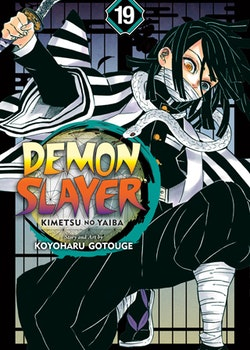Demon Slayer: Kimetsu no Yaiba vol. 19 (Viz Media)