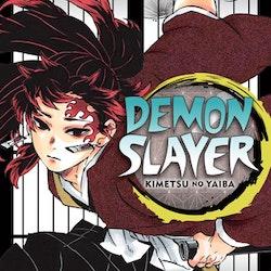 Demon Slayer: Kimetsu no Yaiba vol. 20 (Viz Media)