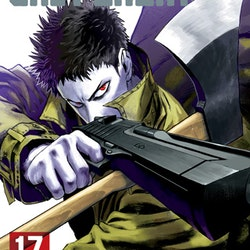 One-Punch Man vol. 17 (Viz Media)