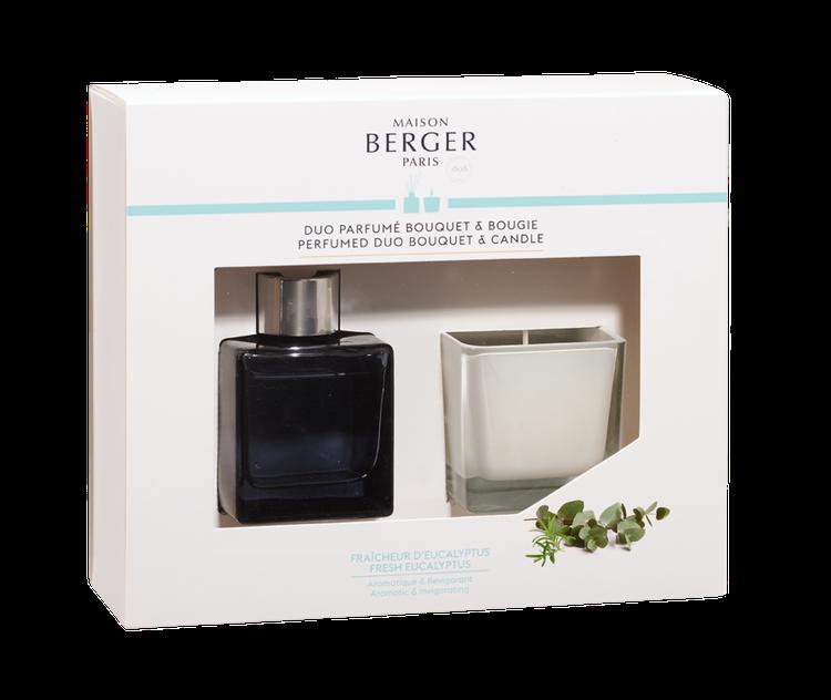 Doftpinnar  - Diffuser, och doftljus Fresh Eucalyptus - Maison Berger