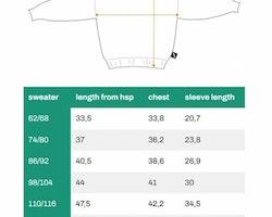 Sweatshirt för barn - Vildhästar 86-140cl