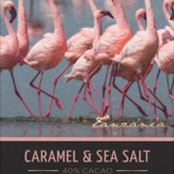 Cachet, Mjölkchoklad med Karamell & Havssalt, Ekologisk