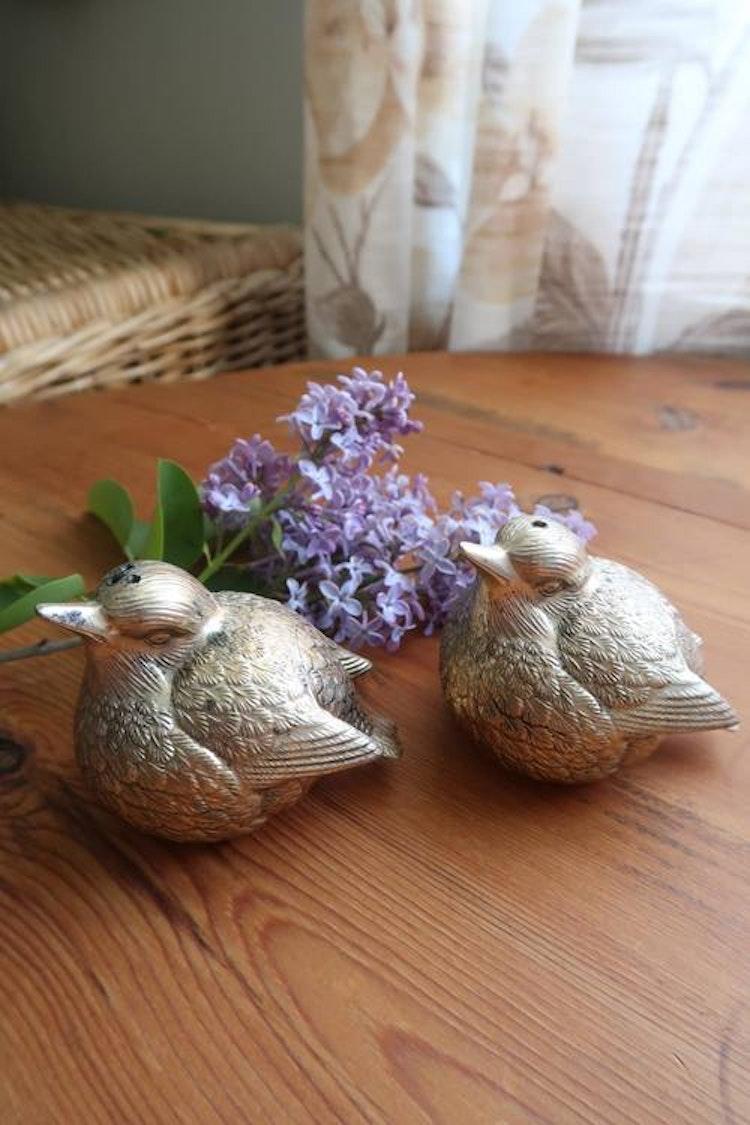Salt & peppar fåglar