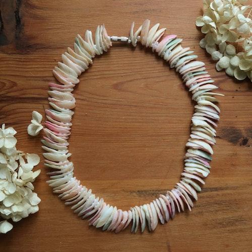 Pastellfärgat snäckhalsband