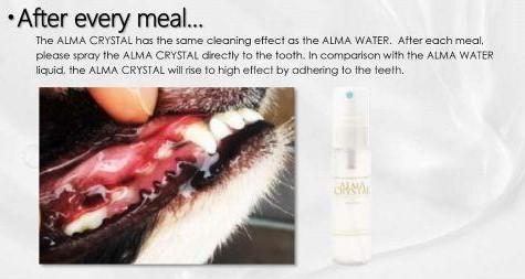 ALMA Dental Starter - Alma Diamond+Alma Crystal