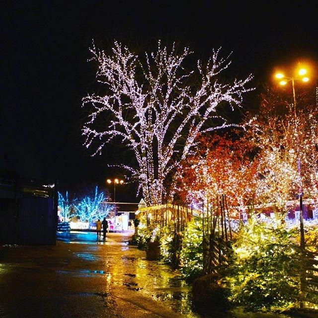 Sista dagen på Kosta julmarknad.