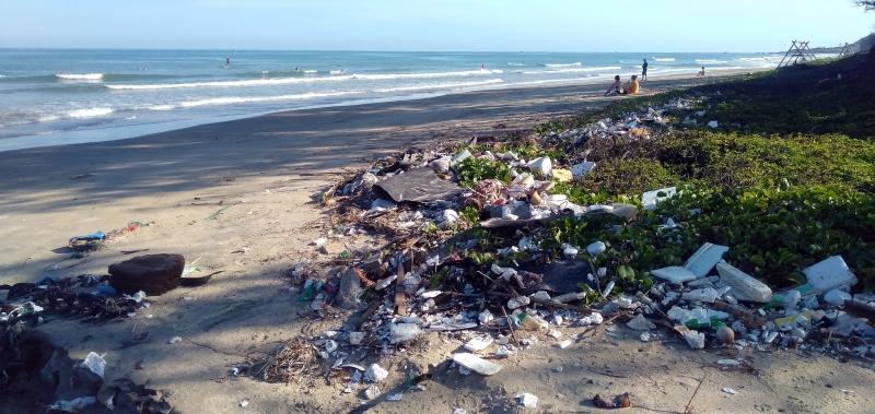 Plastföroreningar fakta och siffror