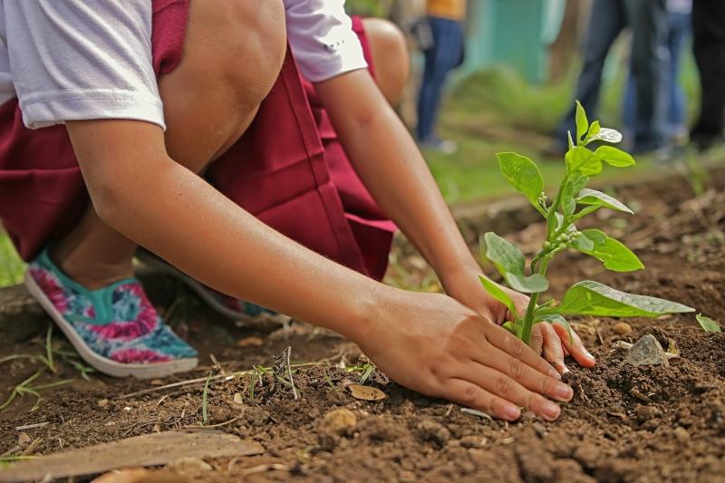 Eco-earn, den nya affärsstrategin