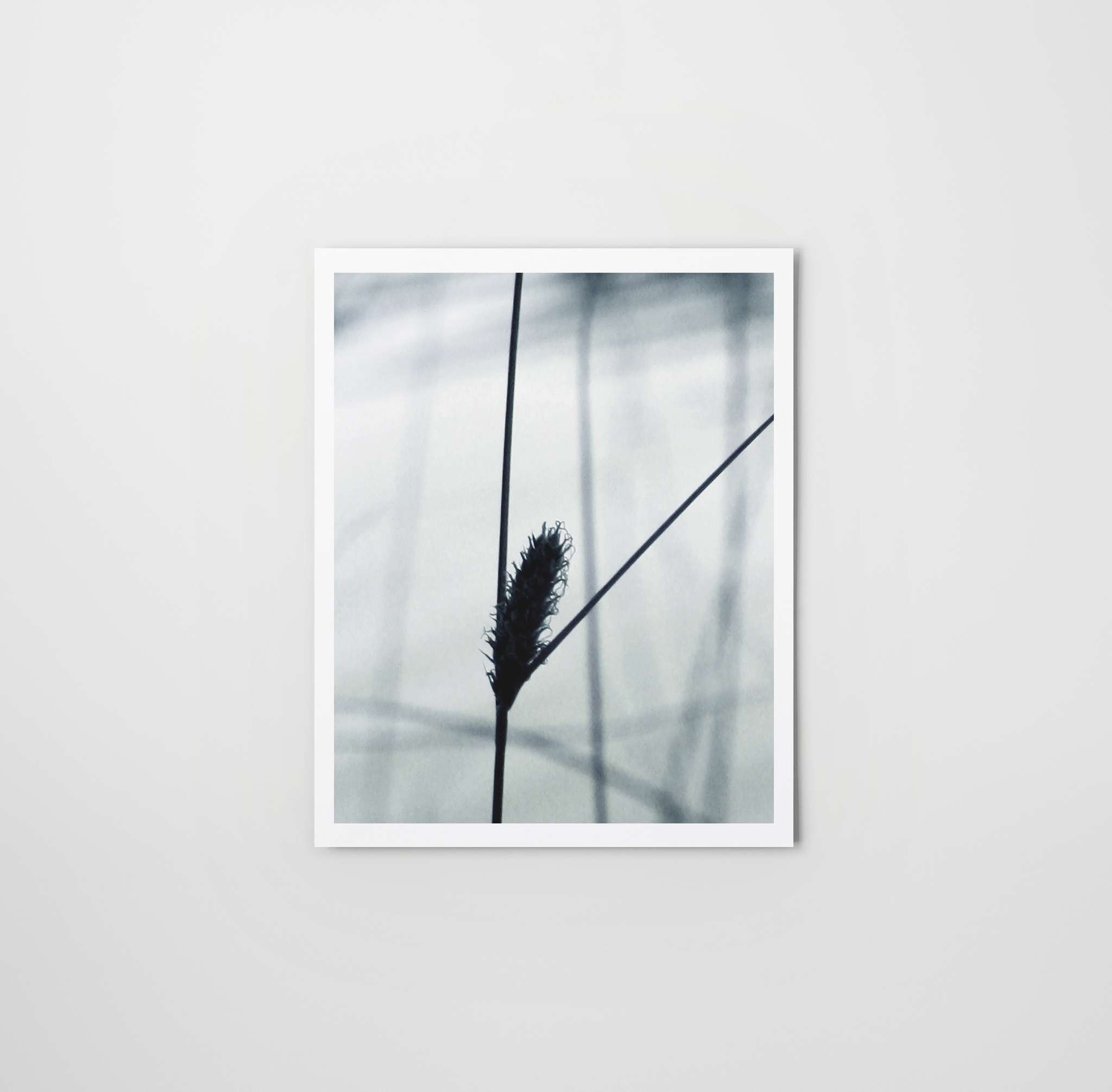 Victory - Photo art print