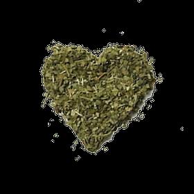 Yerba mate grön
