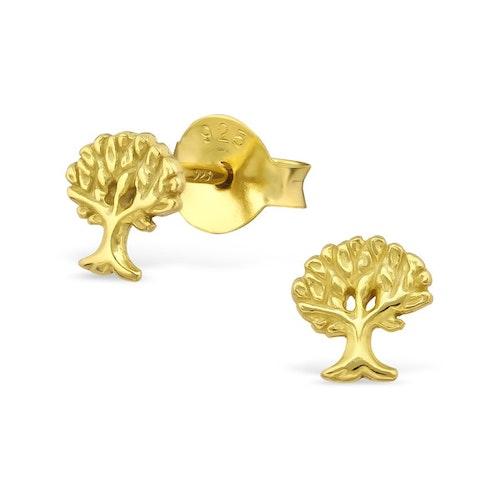 Örhängen Livets Träd Guld