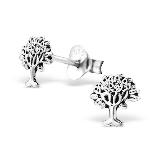 Örhängen Livets Träd Silver