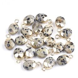 Guldfärgad oval berlock dalmatiner jaspis, 1 st