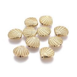 Guldfärgad pärla snäcka, 1 st