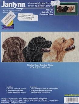 Labrador Trio
