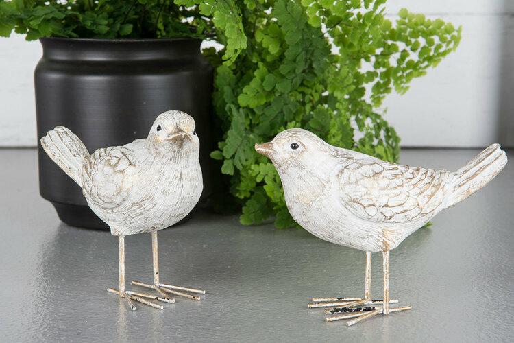 Fågel stående