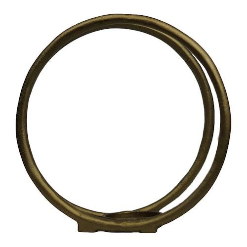 Ring Lysholder Gull