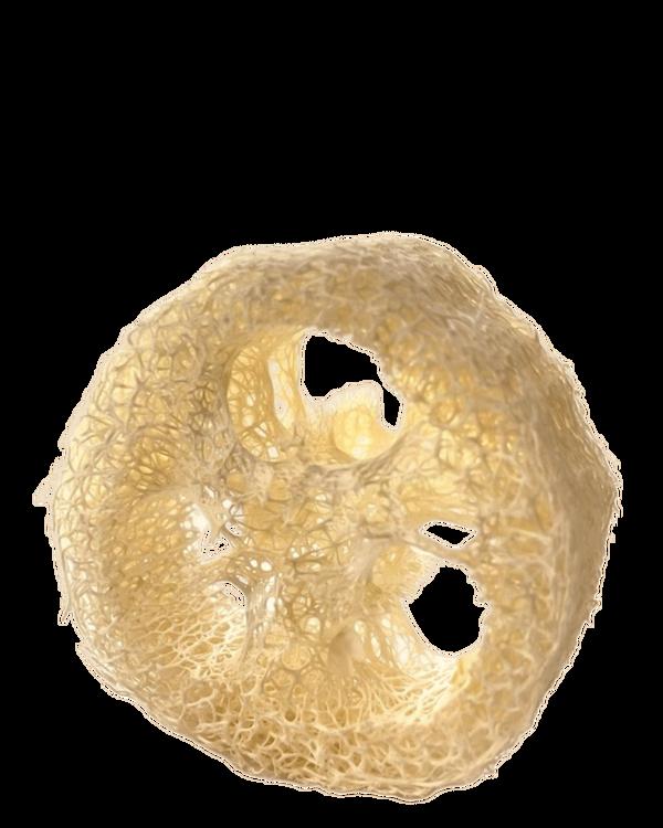 Loofa-svamp - Naturligt tvålfat