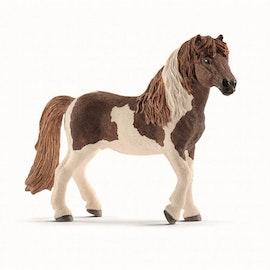 Schleich Islandshäst Hingst