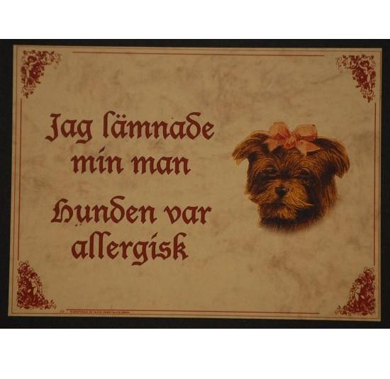 "Tavla (kloka ord) ""Allergisk hund"""