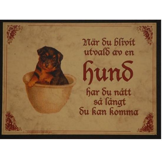 "Tavla (kloka ord) ""Hundens val"""