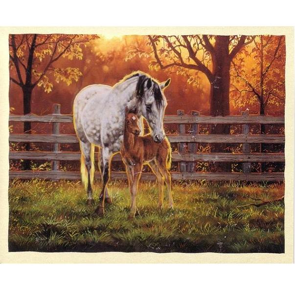 """Kort """"Hästar"""""""
