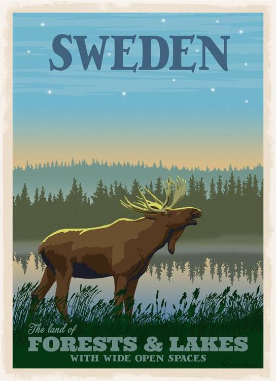 Poster  Moose Forests / Lakes 50x70cm