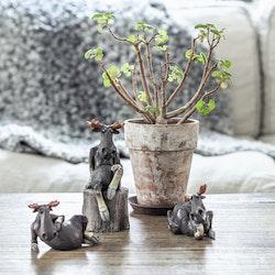 Älg sitter på en stubbe, 13,5cm