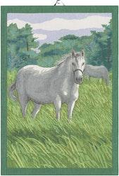 Horse handduk 35X50, 100% Ekologisk Bomull