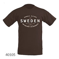 T-shirt Sweden Backcountry,  Brun