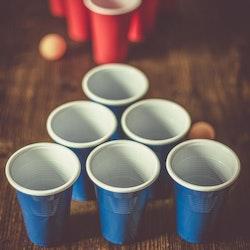 Swe Beer Pong Set