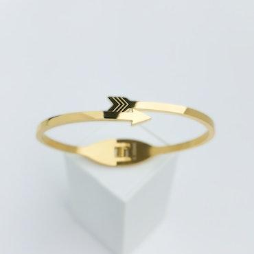 Accuracy Gold Edition Armband