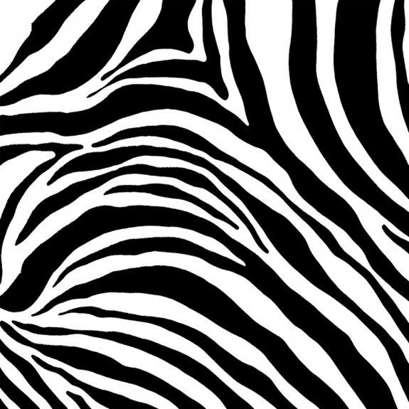 Dekorplast (45 x 200 cm) - Zebra