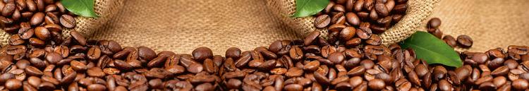 Splashback stänkskydd - COFFEE