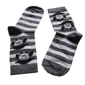 Pirate Owl Sock